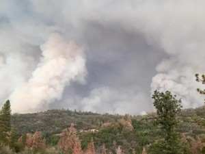 Burnout-Operations-on-Rough-Fire-Near-Snowline-Lodge-photo-SNF-300x225
