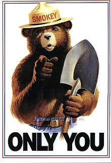 220px-Smokey_Bear_Only_You_campaign_hat